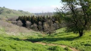 PA 4 uphill